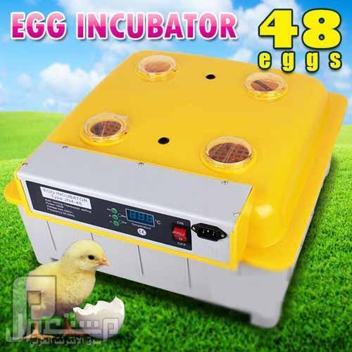 فقاسة بيض فل اوتوماتيك 48 بيضةEgg incubator hatching machine ظپظ'ط§ط³ط©_ط¨ظٹط¶_ظپ